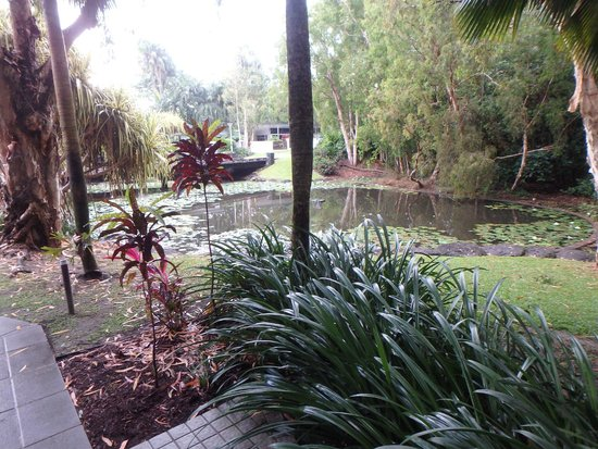 Tropical Gardens Picture Of Sanctuary Palm Cove Palm Cove Tripadvisor