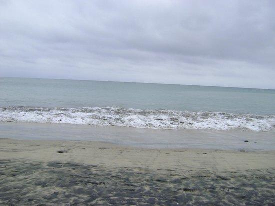 Barceló Salinas: playa