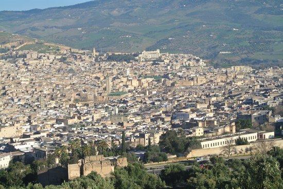 Medina of Fez: フェズの街の全容
