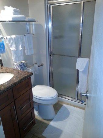 Terracehouse Condominiums: Small Master Bath