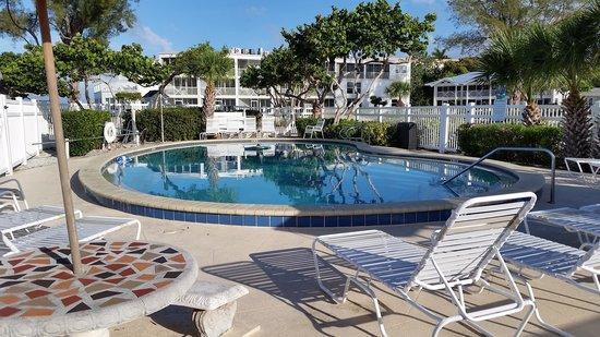 Island Inn : pool