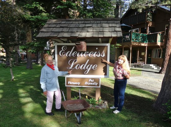 Edelweiss Lodge : Out front