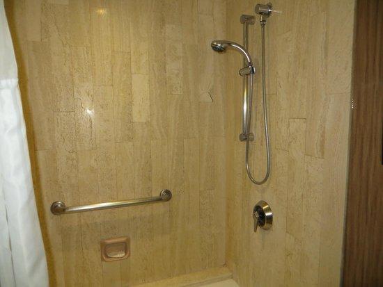 Hilton Toronto : Bathroom shower