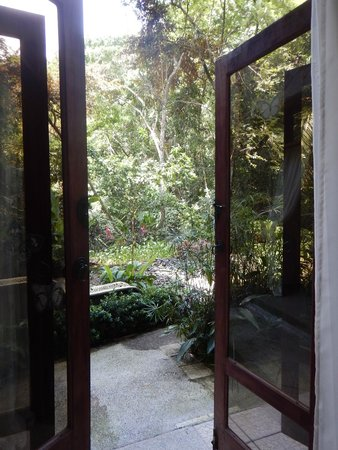 Raindrop Spa: view from my massage table