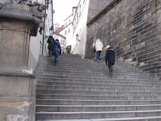 Château de Prague : かなり登るよ。