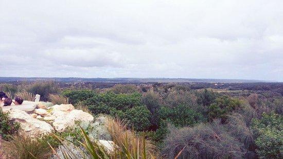 Peninsula Hot Springs: Hilltop View