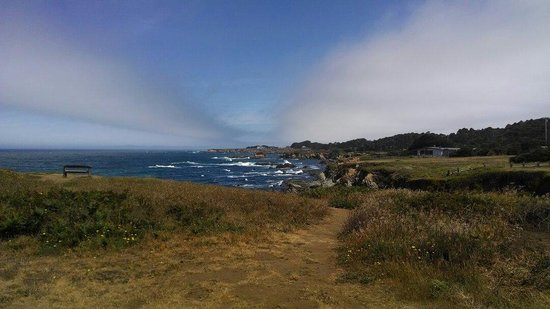 Mendocino Coast Botanical Gardens: Overlooking the Pacific
