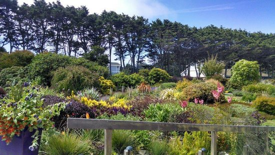 Mendocino Coast Botanical Gardens: Photos don't do it justice!