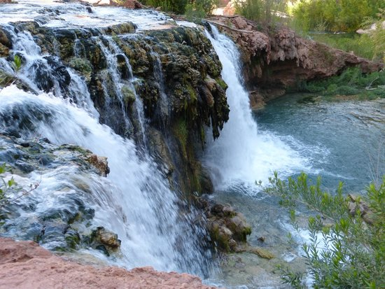 Havasupai Falls : New Navajo Falls - the best for swimming