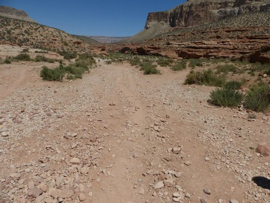 Havasupai Falls : The hike down - this is a lot of what the trail looks like