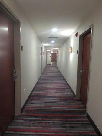Kimpton Onyx Hotel: corridor