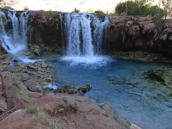 Havasupai Falls : Navajo Falls