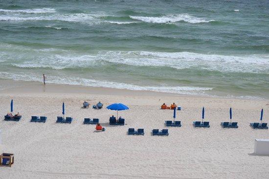 Osprey on the Gulf: Hotel beach Area