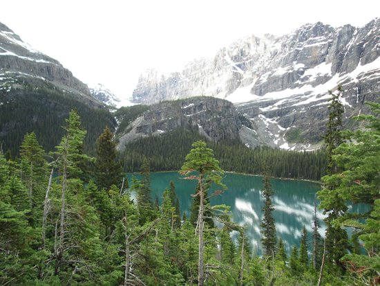 Lake O'Hara Hiking - ALPINE HOLIDAYS: The View From Above