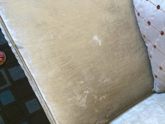 Hotel Shattuck Plaza: Scary white stains on couches