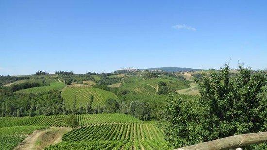 Agriturismo La Lucciolaia: View