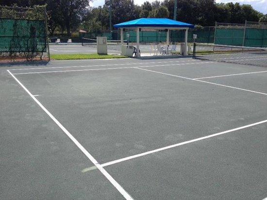 Hyatt Regency Grand Cypress : quadra de tenis