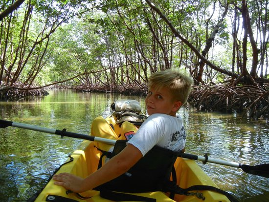 Kayak Marco : Like Going Through A Living Tunnel