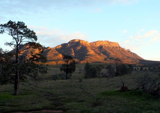 Rawnsley Park Station Eco Villas: Wilpena: Eastern wall at dawn