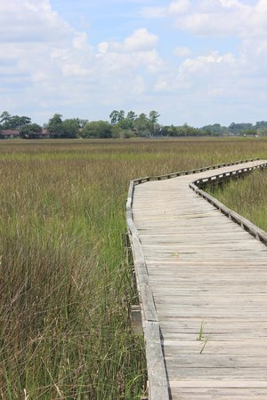 Oatland Island Wildlife Center: Boardwalk through salt marsh