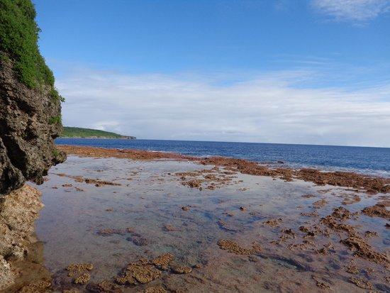 Scenic Matavai Resort Niue: Matavai beach at low tide
