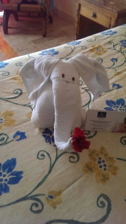 IBEROSTAR Paraiso Del Mar: One of the many different animal/towels