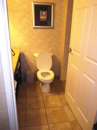Wingate by Wyndham Erie : Bathroom