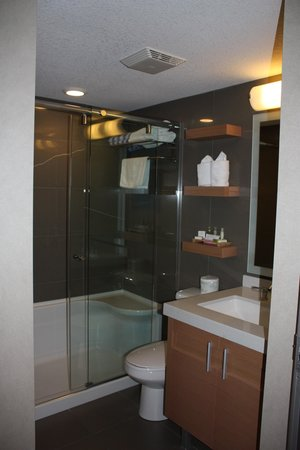 Mount Robson Inn: bathroom