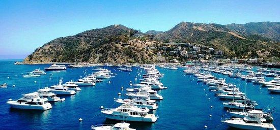 The Edgewater: Beautiful harbor view from Casino