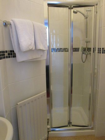 Virginia Lodge Guest House: Shower in Private Bath