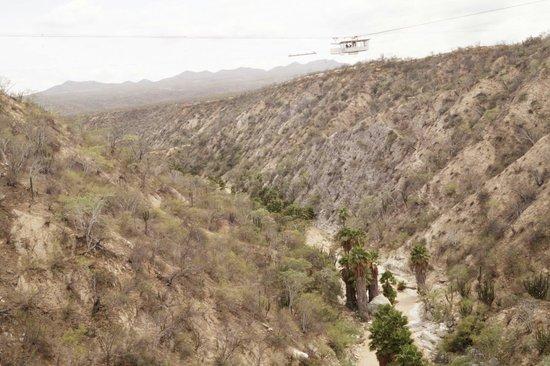 Wild Canyon Adventures: Hemosa vista desde el puente colgante! De esa caseta es de donde puedes aventarte del bungie