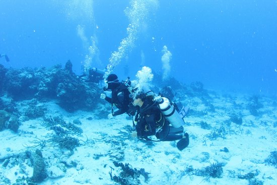 Deep Blue Scuba Diving : My girlfriend with dive instructor Jackie