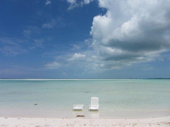 Playa Paraiso : Tutta x noi..