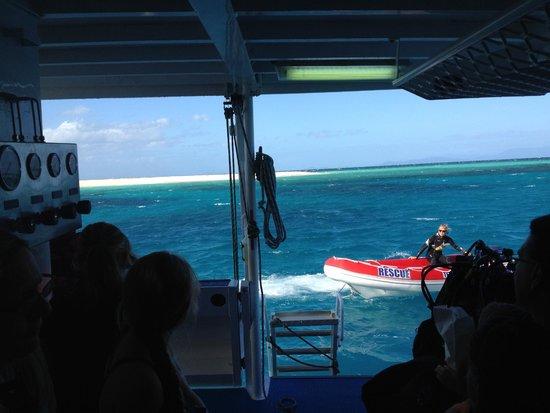 Seastar Cruises Reef Day Trips: Rearview
