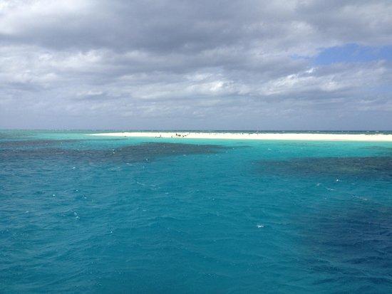 Seastar Cruises Reef Day Trips: Michaelmas Cay