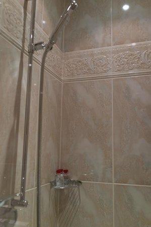 Beau-Rivage Palace: バスルーム