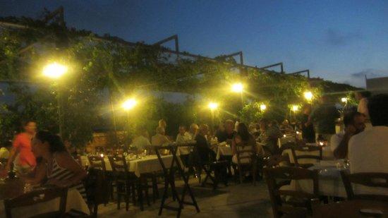 Taverna Mousikos  Sotira Ayia Napa-Traditional atmosphere