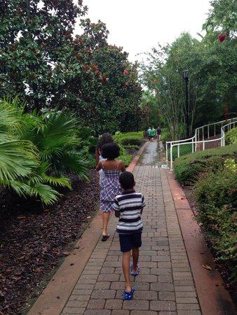 The Ritz-Carlton Orlando, Grande Lakes: Path to the self-parking lot