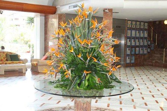 Spring Arona Gran Hotel : Холл