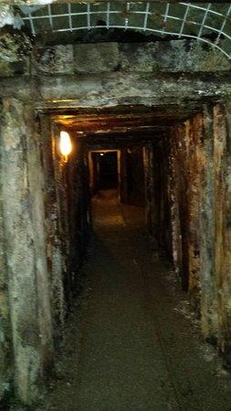 Il Parco Archeominerario di San Silvestro: La prima escursione a piedi con visita guidata
