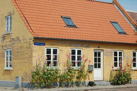 Radisson Blu H.C. Andersen Hotel, Odense: mysig stad att bo i