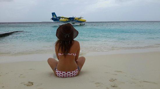 Adaaran Select Meedhupparu : Белый песок, зелёное море, чистый горизонт и самолёт, как символ дороги...