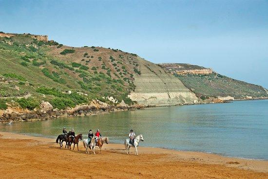 Island of Gozo, Malta: Horse Riding in Ramla l-Hamra, Xaghra, Gozo