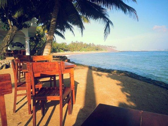Palm Villa: Uitzicht tijdens ontbijt