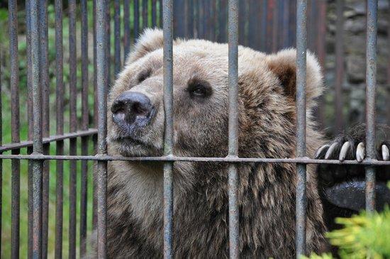 Zoo Spisska Nova Ves