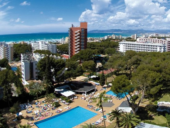 Hotel Riu Playa Park : Hotel