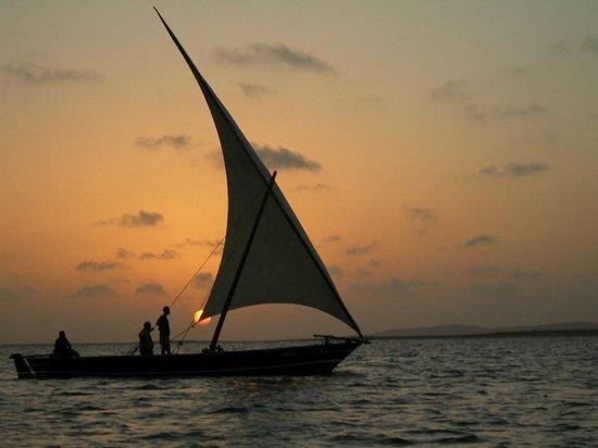 Mkoko House: sunset cruises