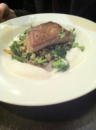 The Bistro: tuna with bacon foam, mushroom puree and veg
