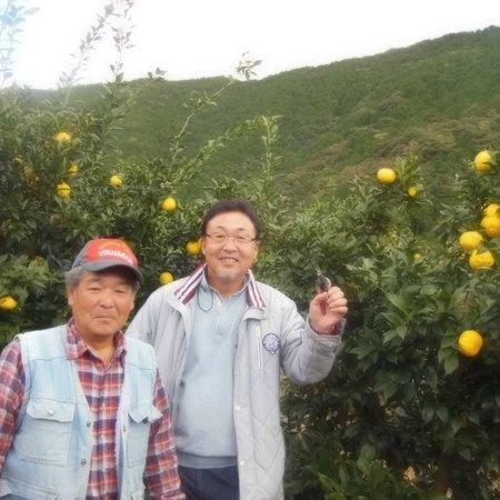 Ramen Yoroiya: 与ろゐ屋のらーめんの特徴でもある柚子は高知県北川村産のものを使用しています。