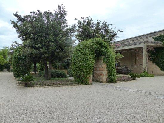 Masseria Baroni Nuovi: Central courtyard